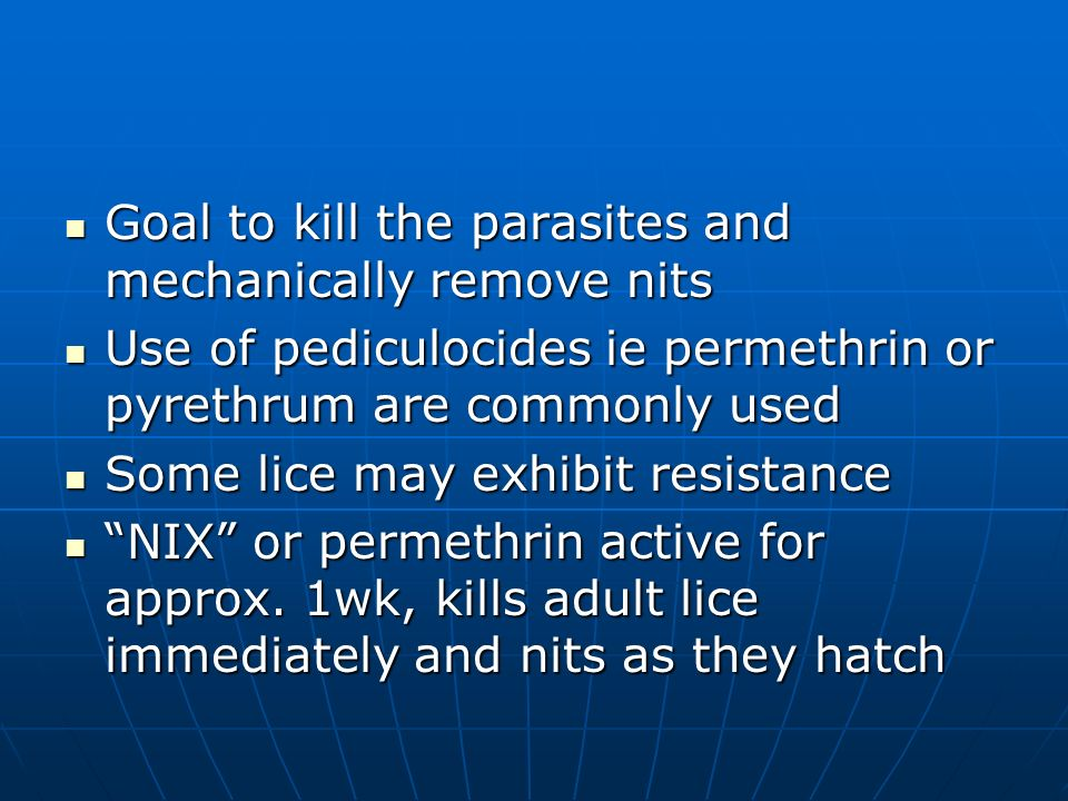 Goal to kill the parasites and mechanically remove nits