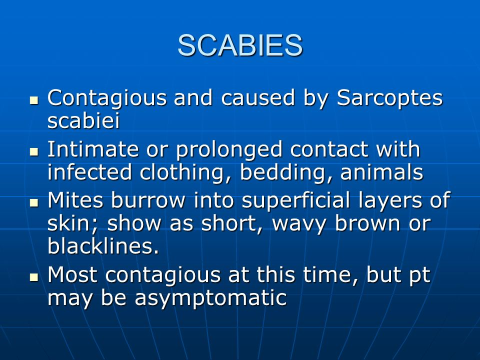 SCABIES Contagious and caused by Sarcoptes scabiei