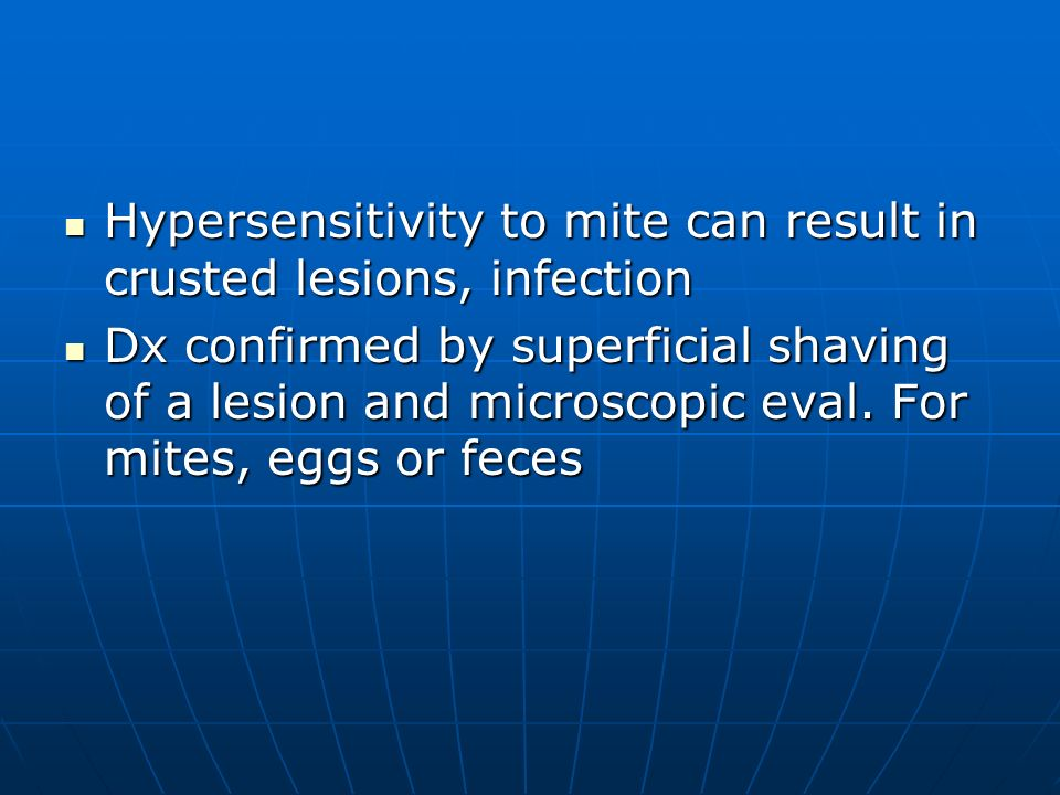 Hypersensitivity to mite can result in crusted lesions, infection