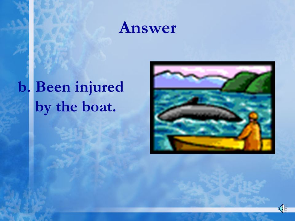 Answer b. Been injured by the boat.