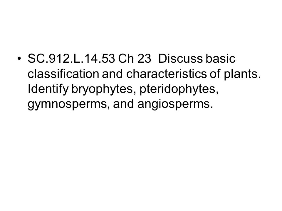 SC.912.L.14.53 Ch 23 Discuss basic classification and characteristics of plants.