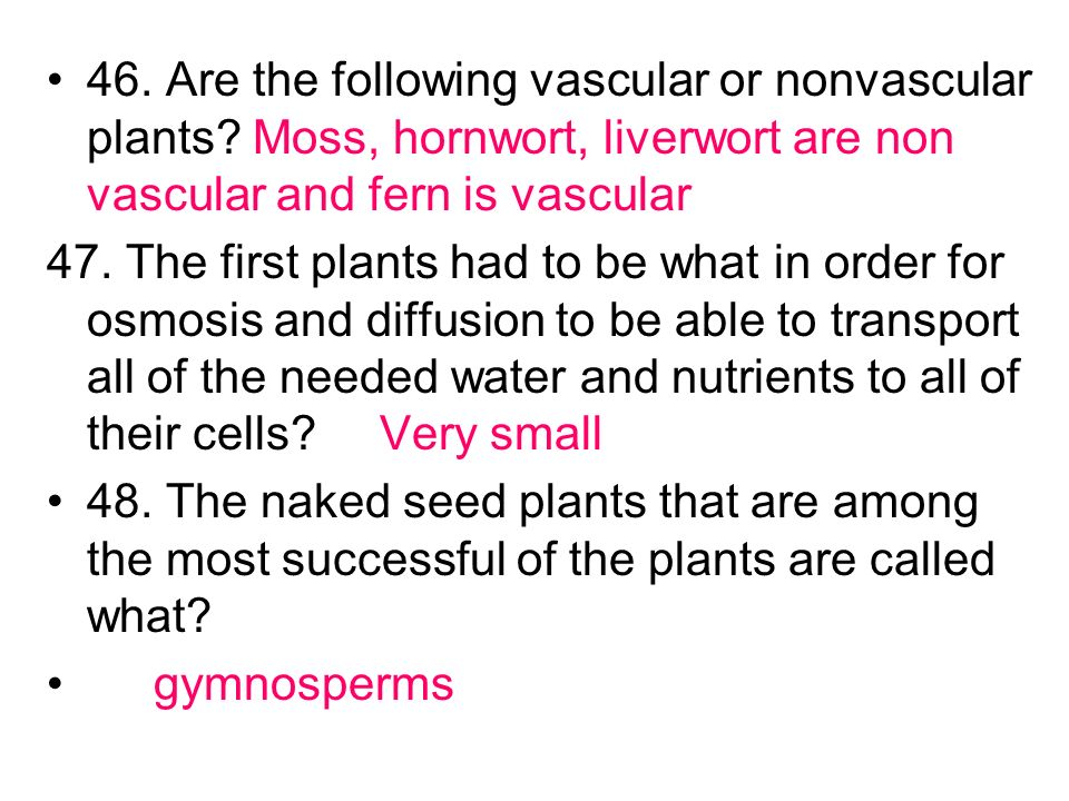 46. Are the following vascular or nonvascular plants