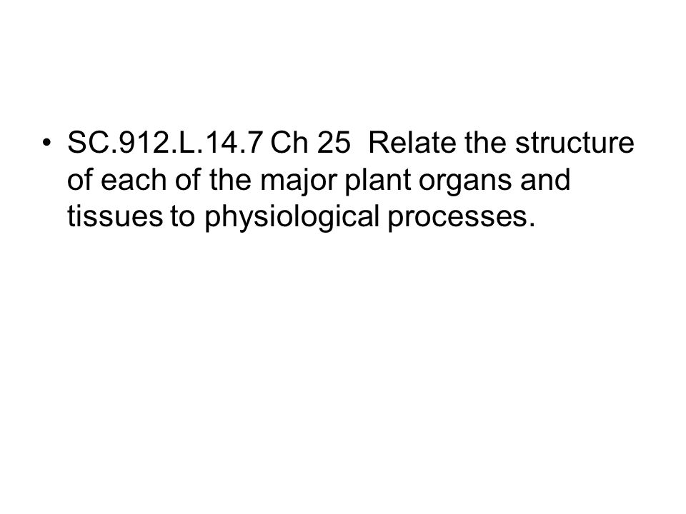 SC.912.L.14.7 Ch 25 Relate the structure of each of the major plant organs and tissues to physiological processes.