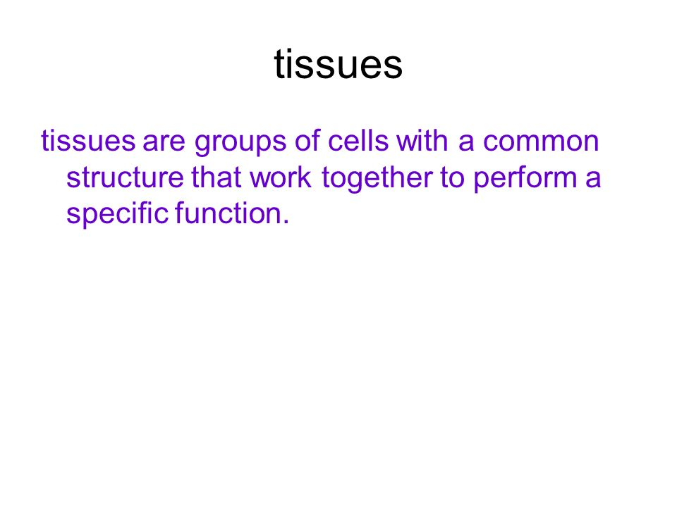 tissues tissues are groups of cells with a common structure that work together to perform a specific function.