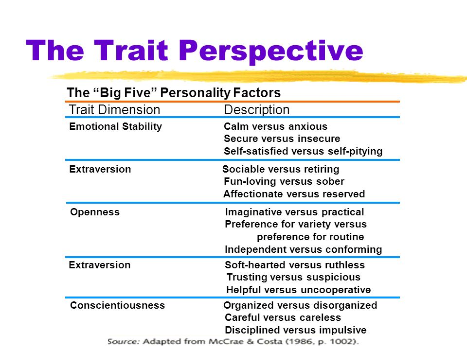 The Trait Perspective The Big Five Personality Factors