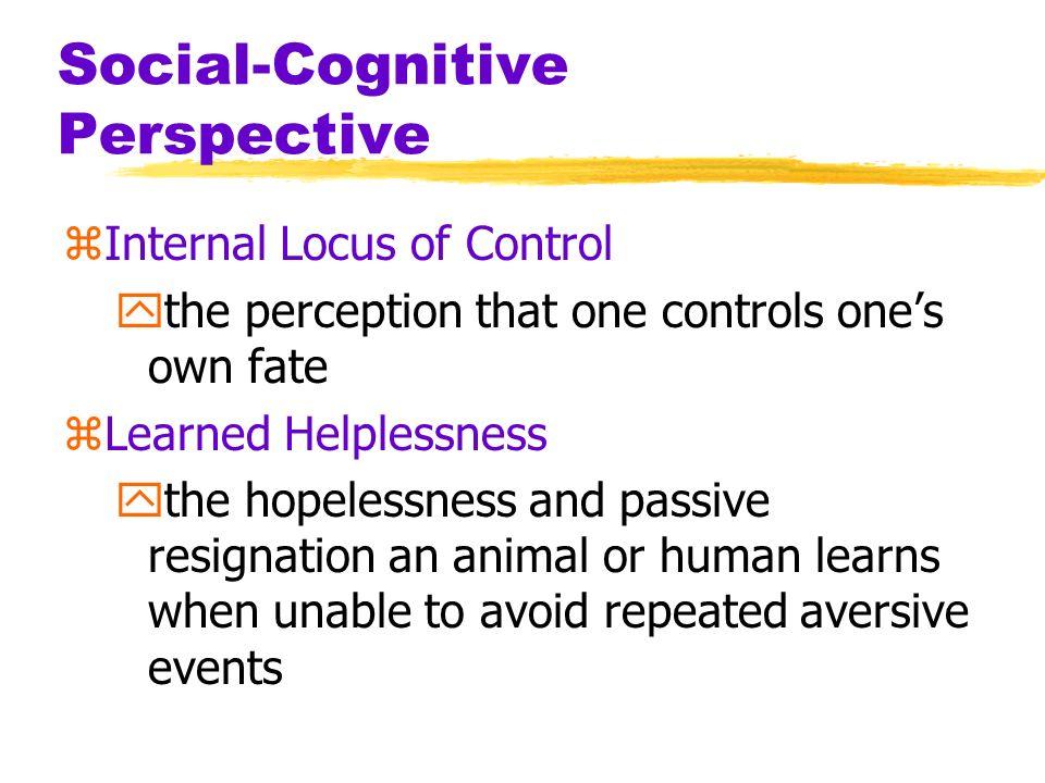 Social-Cognitive Perspective