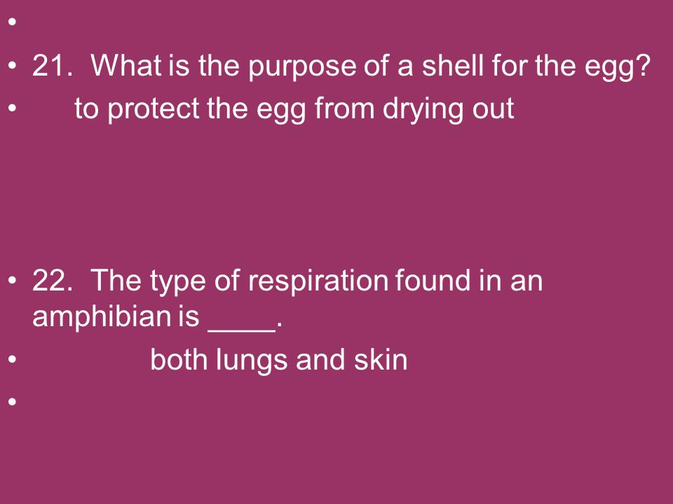 21. What is the purpose of a shell for the egg