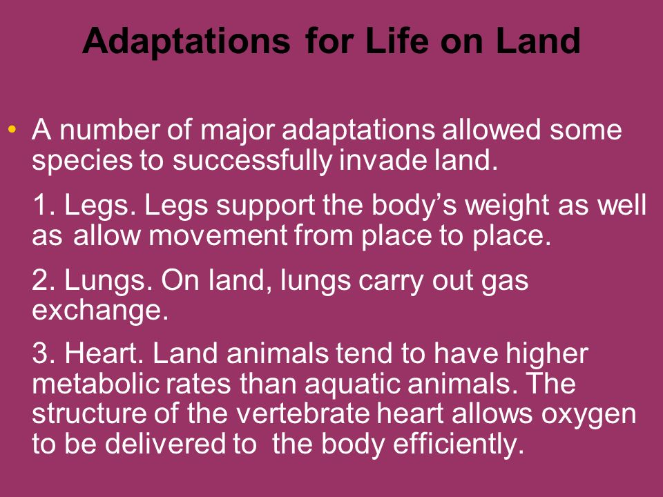the vertebrate adaptions for terrestrial life in biology The following adaptations makes the reptiles suitable for terrestrial mode of life:   reptiles have dry skin  mehul singh saini, studied biology & science.