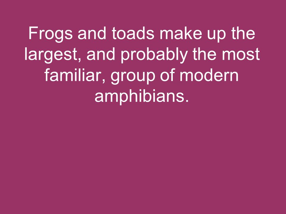 Frogs and toads make up the largest, and probably the most familiar, group of modern amphibians.