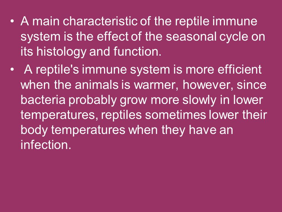 A main characteristic of the reptile immune system is the effect of the seasonal cycle on its histology and function.