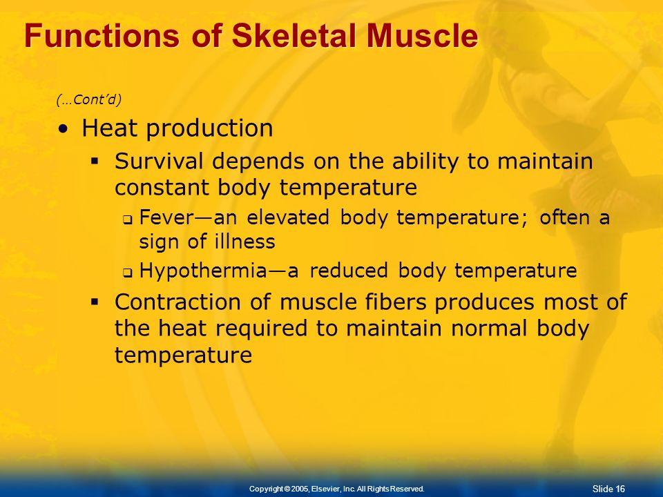Functions of Skeletal Muscle