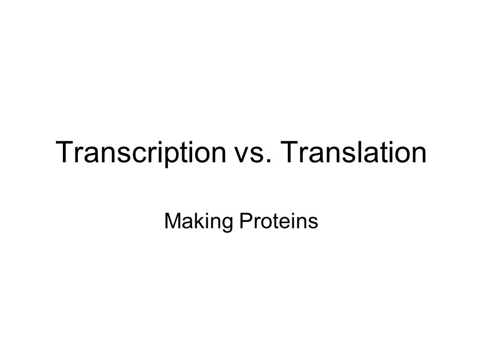 Transcription vs. Translation