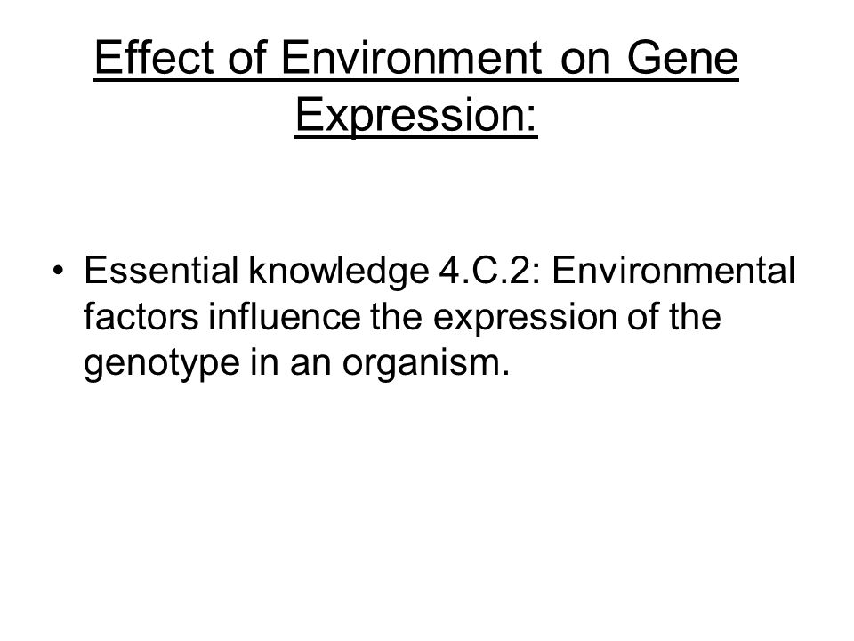 Effect of Environment on Gene Expression: