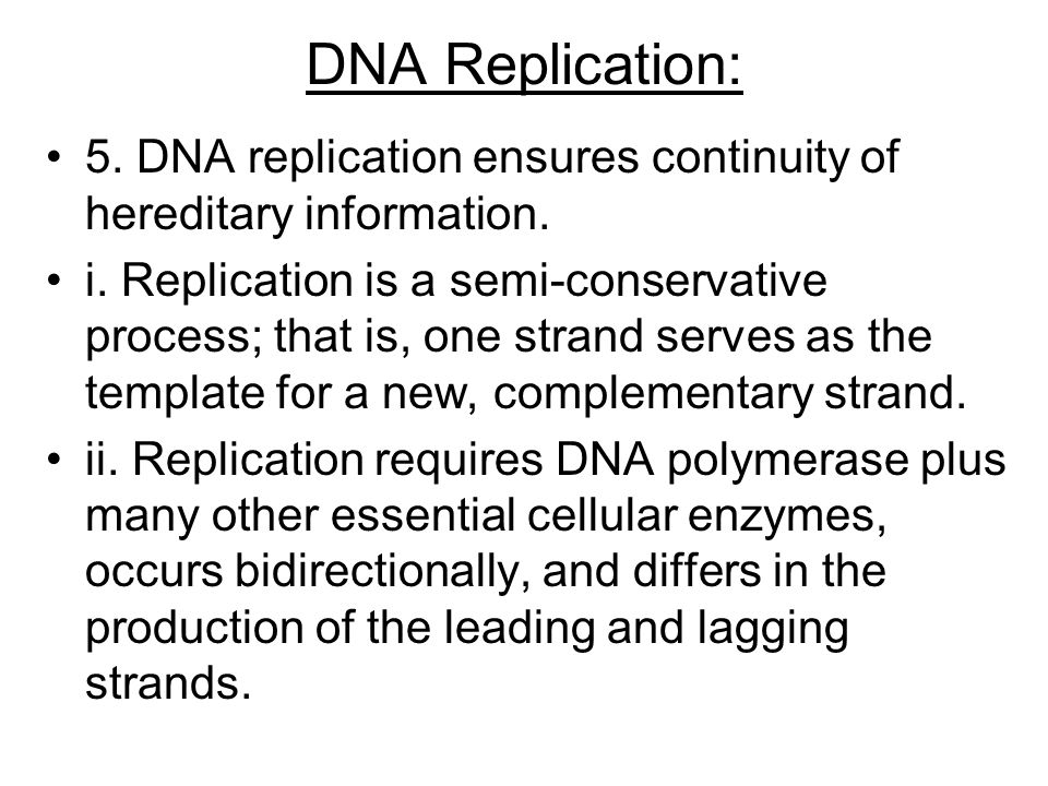 DNA Replication: 5. DNA replication ensures continuity of hereditary information.