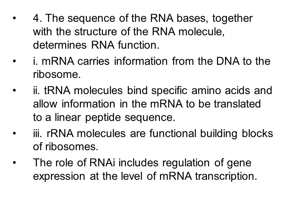 4. The sequence of the RNA bases, together with the structure of the RNA molecule, determines RNA function.
