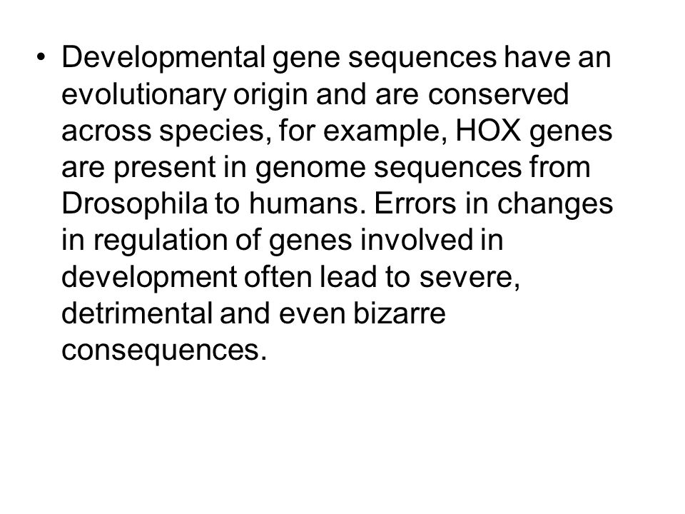 Developmental gene sequences have an evolutionary origin and are conserved across species, for example, HOX genes are present in genome sequences from Drosophila to humans.