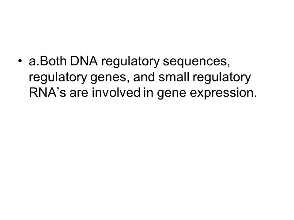 a.Both DNA regulatory sequences, regulatory genes, and small regulatory RNA's are involved in gene expression.