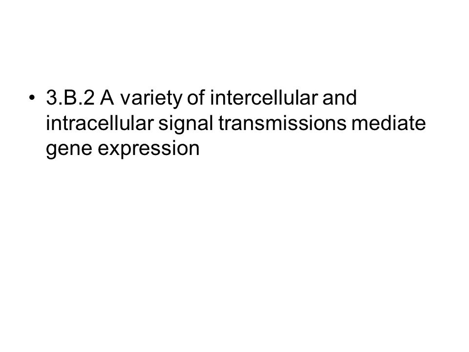 3.B.2 A variety of intercellular and intracellular signal transmissions mediate gene expression