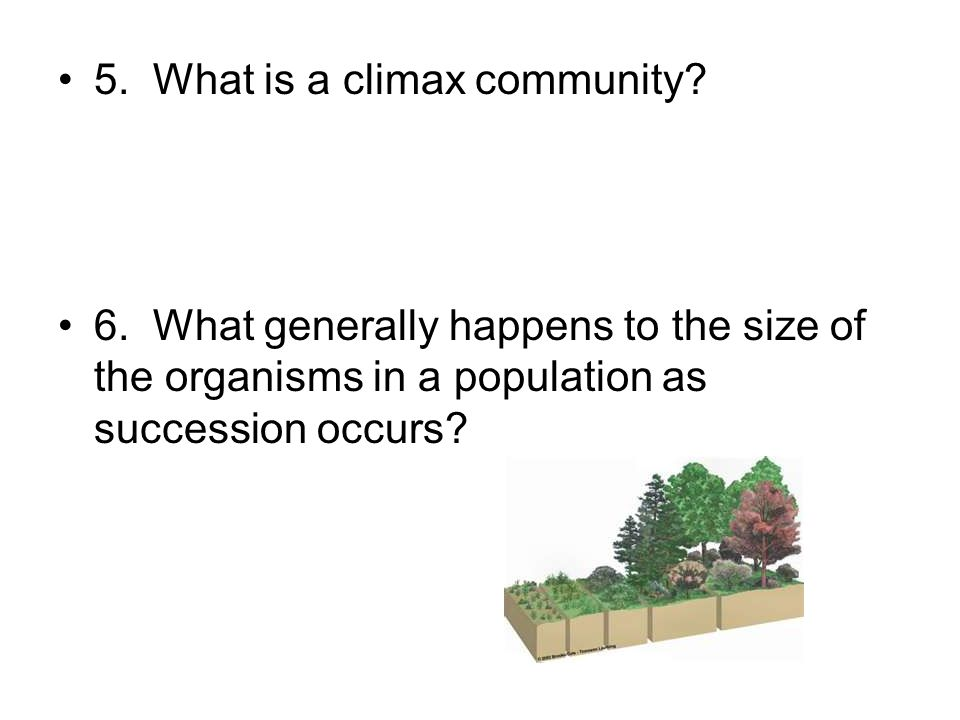 5. What is a climax community