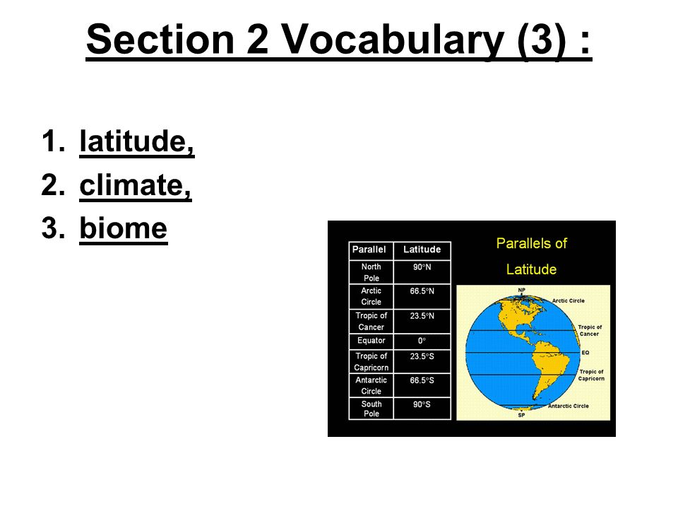 Section 2 Vocabulary (3) :
