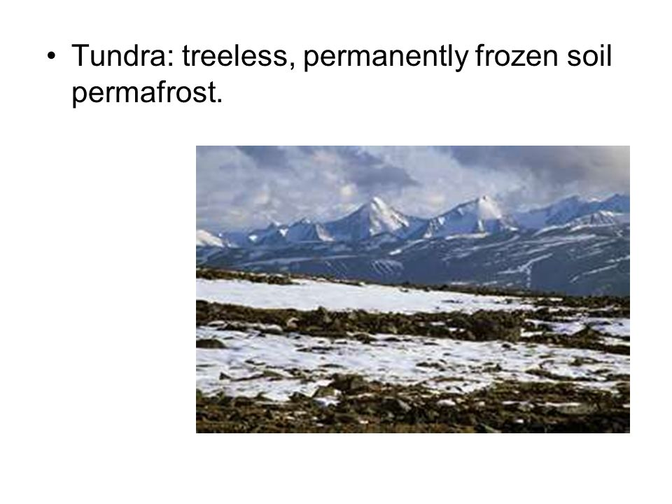 Tundra: treeless, permanently frozen soil permafrost.