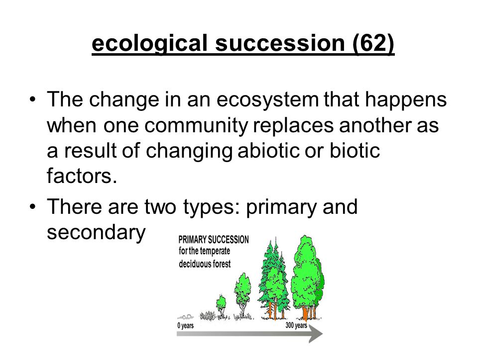 ecological succession (62)