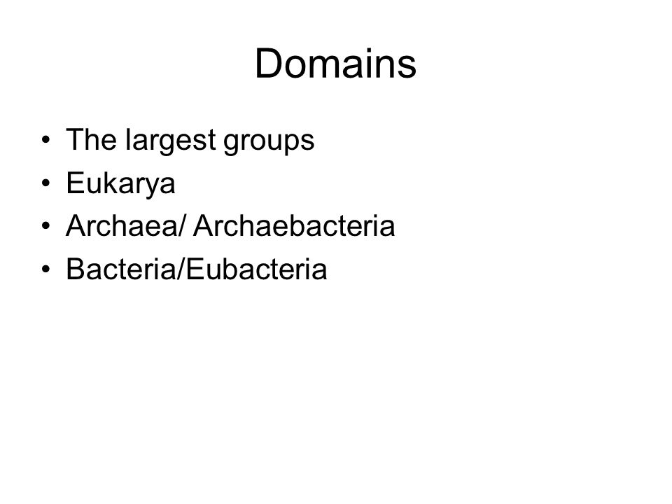 Domains The largest groups Eukarya Archaea/ Archaebacteria