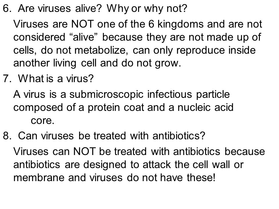 6. Are viruses alive Why or why not