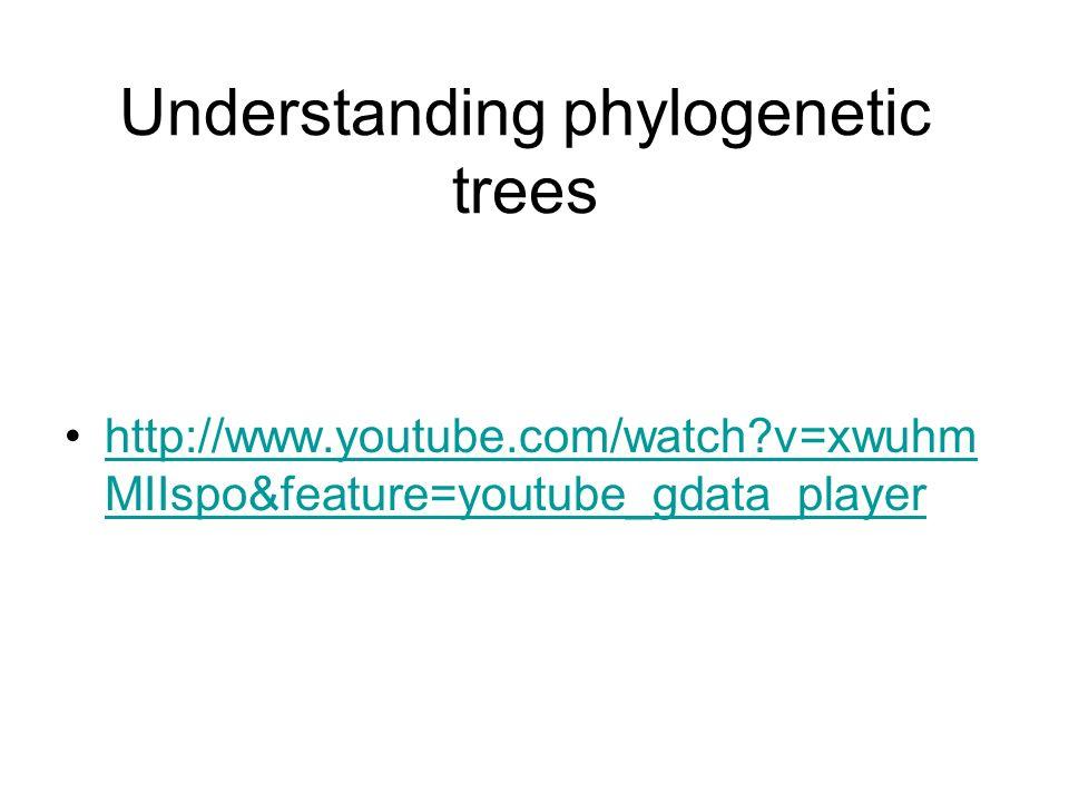 Understanding phylogenetic trees