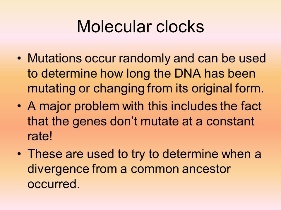 Molecular clocks Mutations occur randomly and can be used to determine how long the DNA has been mutating or changing from its original form.