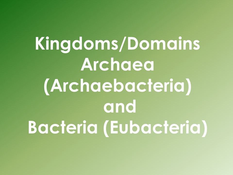 Kingdoms/Domains Archaea (Archaebacteria) and Bacteria (Eubacteria)