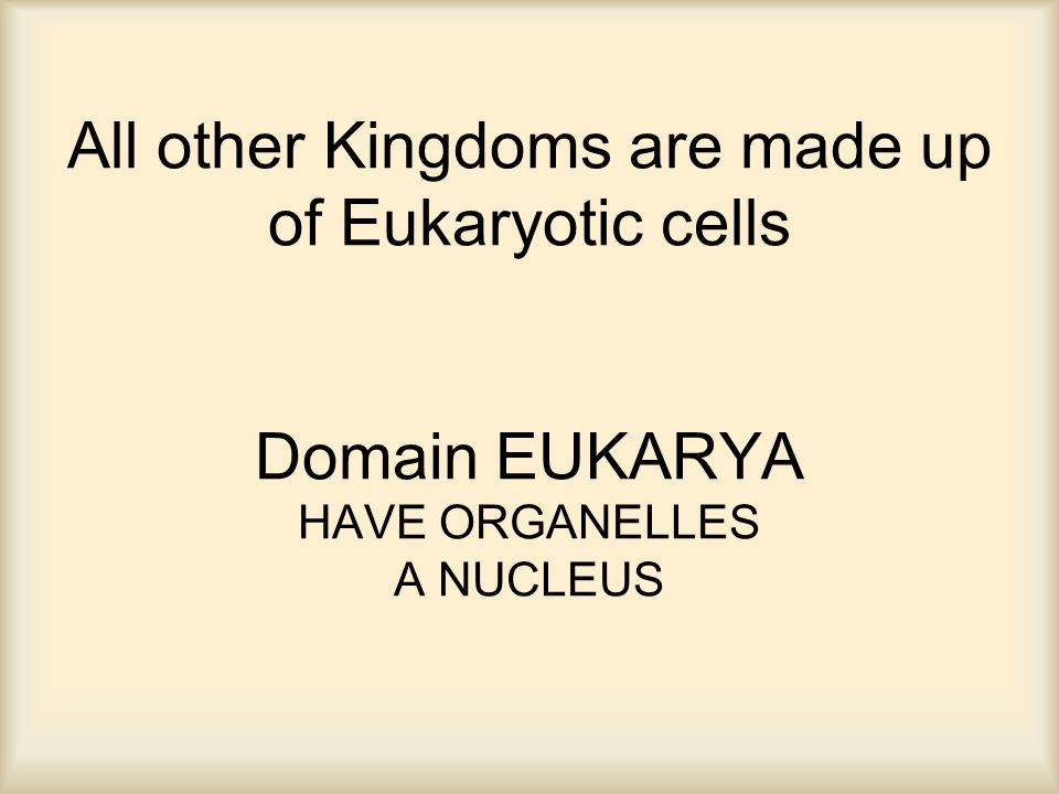 All other Kingdoms are made up of Eukaryotic cells Domain EUKARYA HAVE ORGANELLES A NUCLEUS