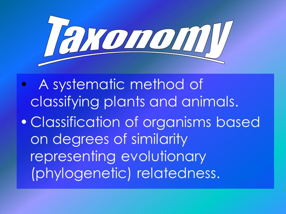 Taxonomy A systematic method of classifying plants and animals.