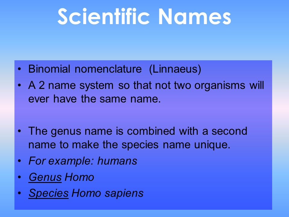 Scientific Names Binomial nomenclature (Linnaeus)