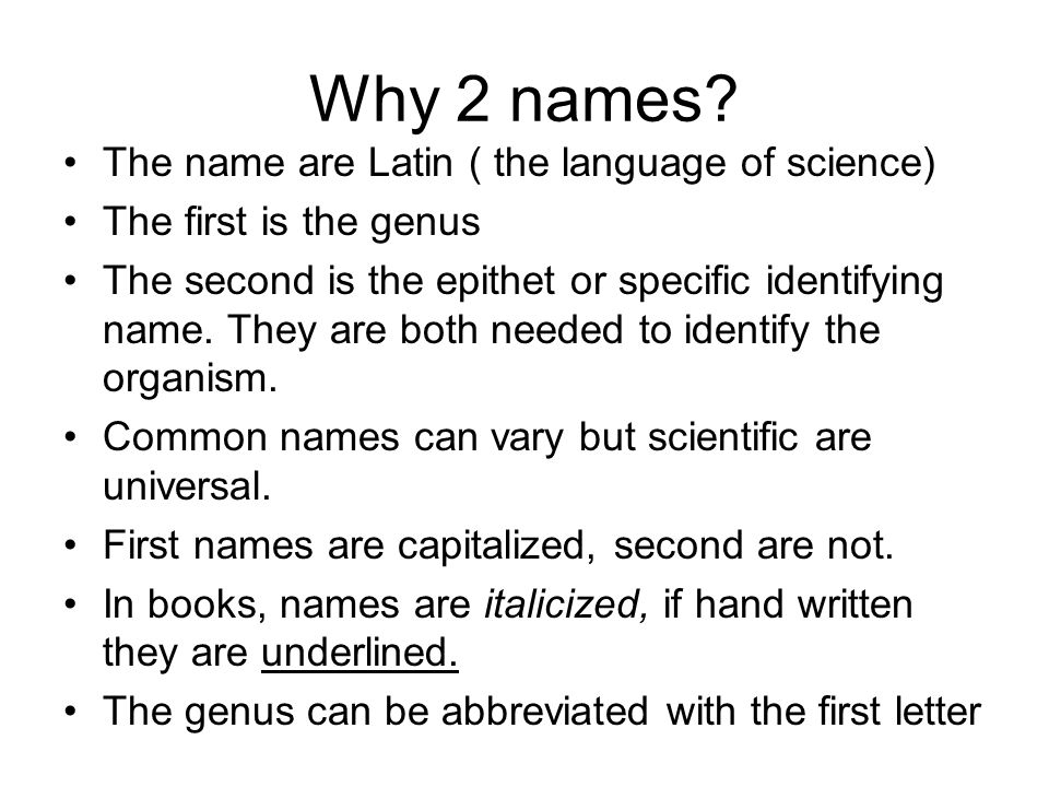 Why 2 names The name are Latin ( the language of science)