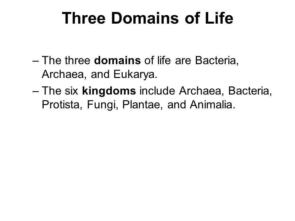 Three Domains of Life The three domains of life are Bacteria, Archaea, and Eukarya.