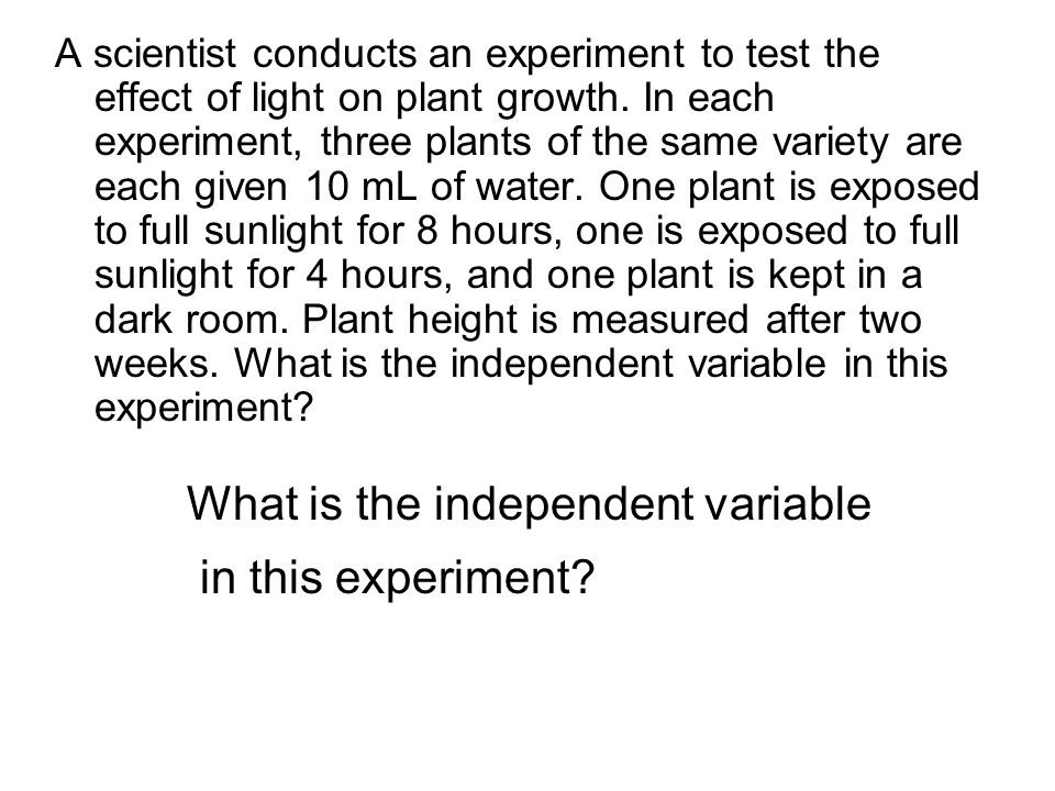 What is the independent variable in this experiment