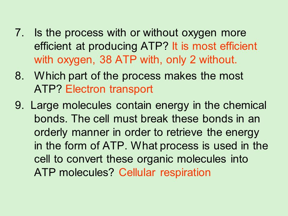 Is the process with or without oxygen more efficient at producing ATP