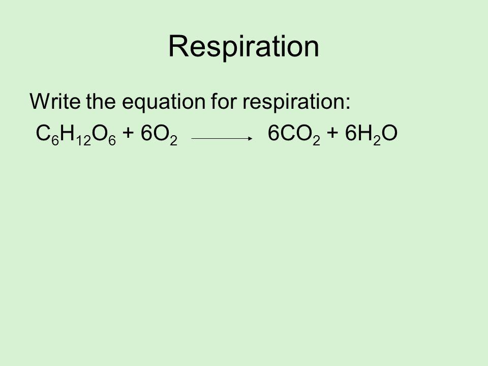 Respiration Write the equation for respiration: