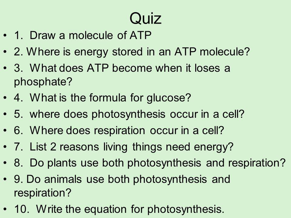 Quiz 1. Draw a molecule of ATP