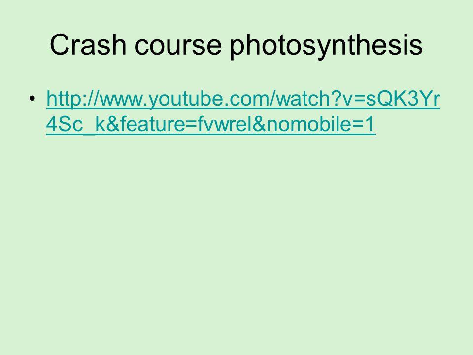 Crash course photosynthesis