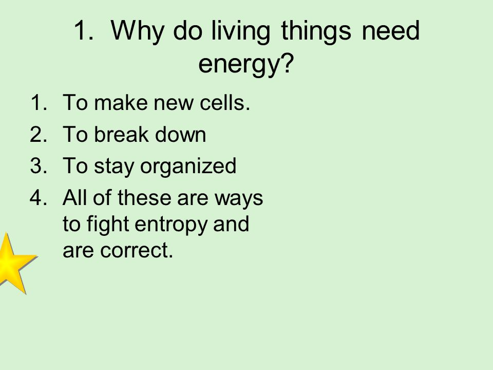 1. Why do living things need energy
