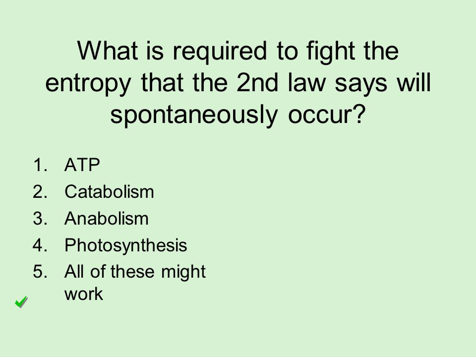 What is required to fight the entropy that the 2nd law says will spontaneously occur