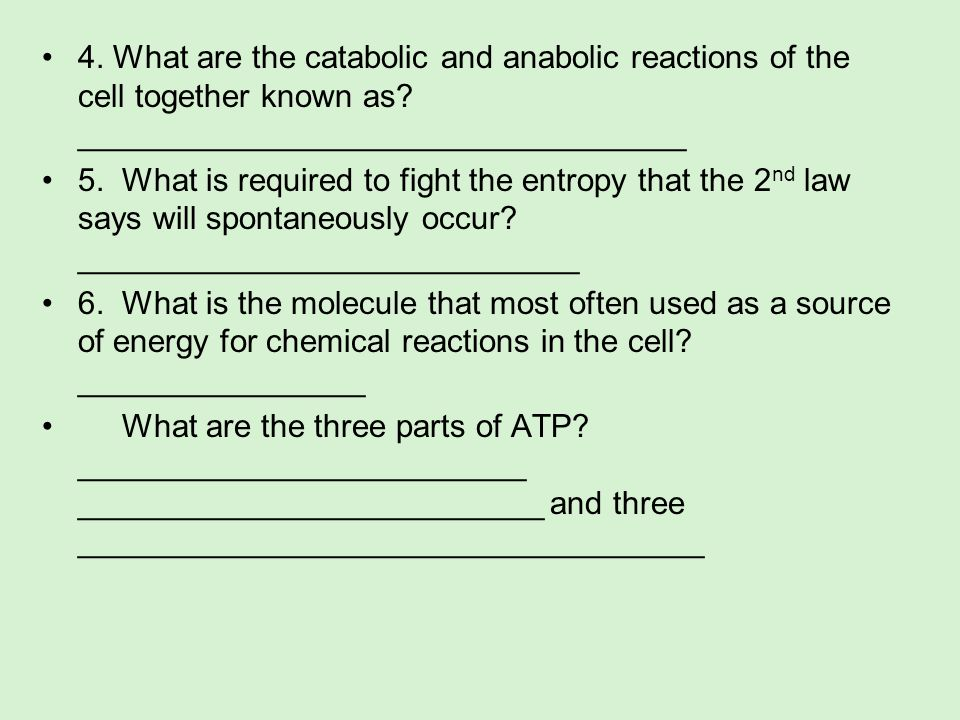 4. What are the catabolic and anabolic reactions of the cell together known as __________________________________