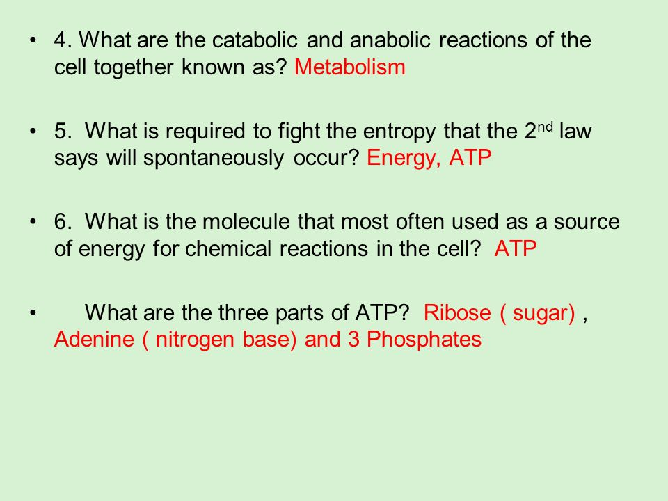4. What are the catabolic and anabolic reactions of the cell together known as Metabolism