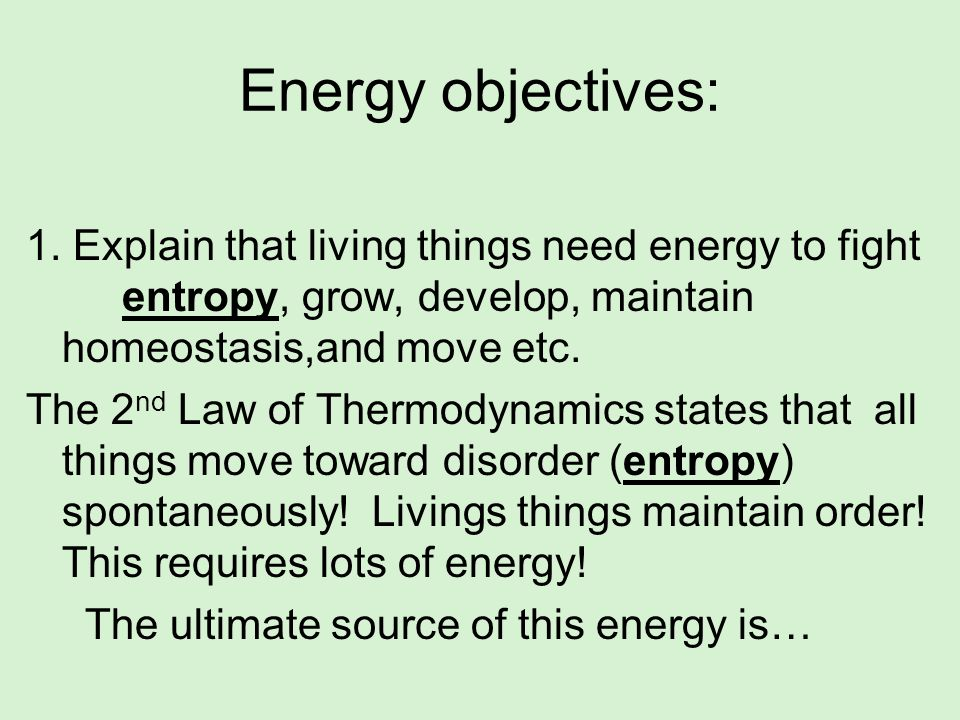 Energy objectives:1. Explain that living things need energy to fight entropy, grow, develop, maintain homeostasis,and move etc.