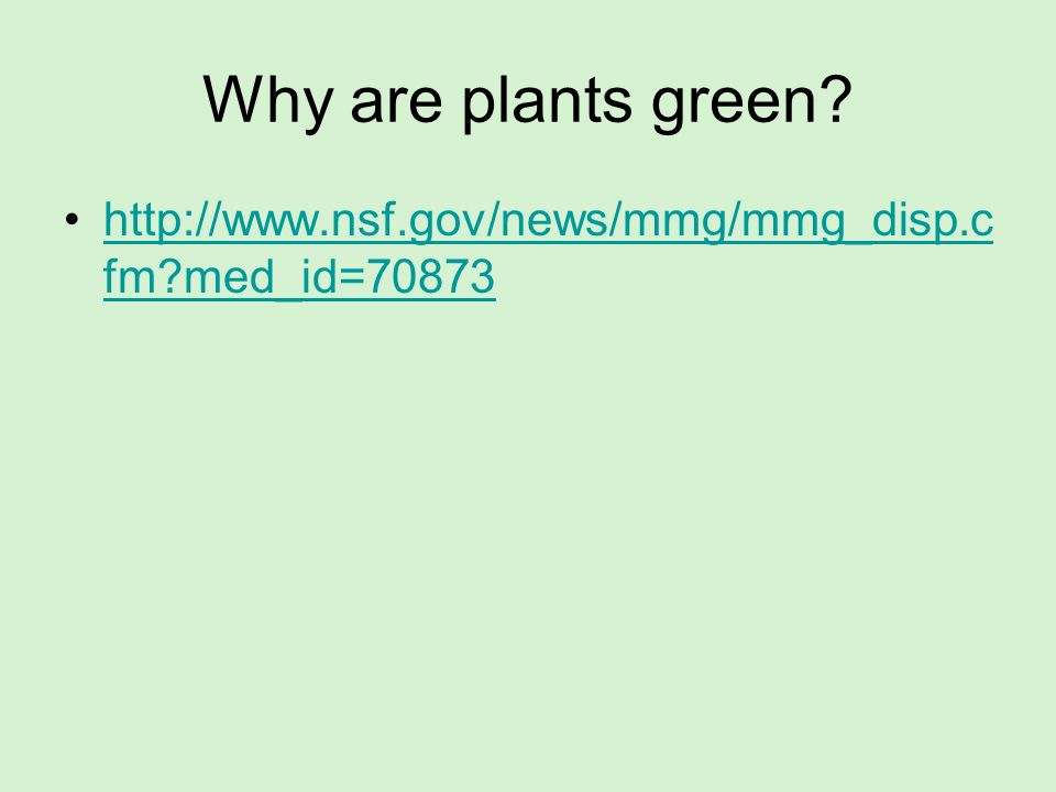 Why are plants green http://www.nsf.gov/news/mmg/mmg_disp.cfm med_id=70873