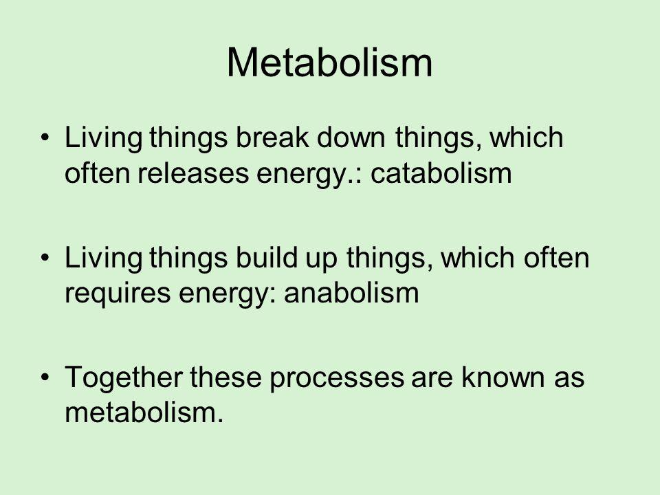 MetabolismLiving things break down things, which often releases energy.: catabolism.