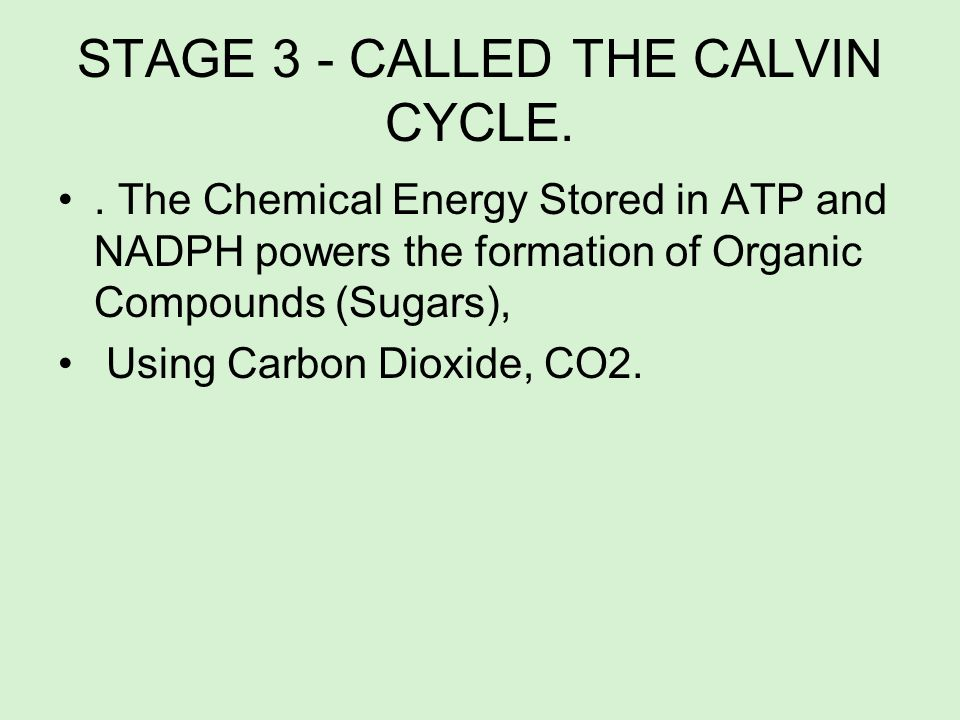 STAGE 3 - CALLED THE CALVIN CYCLE.