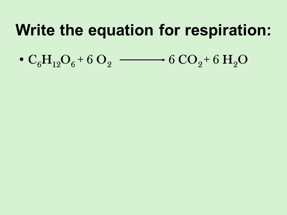 Write the equation for respiration: